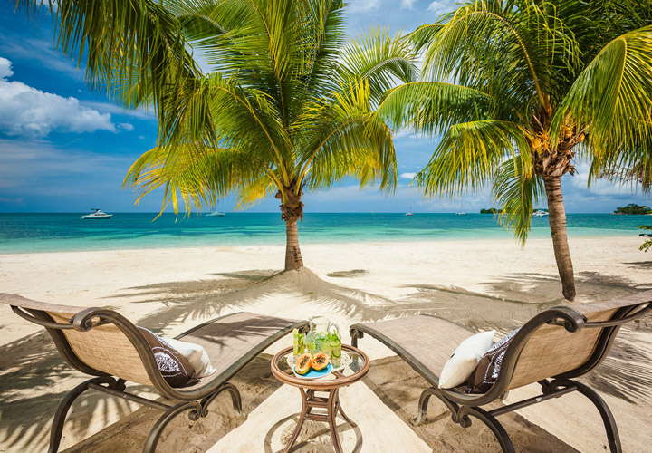 Trip Contribution to Sandals Negril