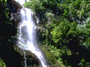 Discover Hilo, Waves & Waterfalls